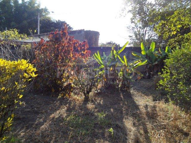 Belíssimo terreno totalmente murado, em bairro tradicional da cidade com 355m² (10x35) com muitas árvores frutíferas. Não aceita financiamento e FGTS.