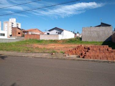 Ótimo terreno com 250m², no Parque São Matheus, na região de Santa Terezinha. Bem localizado e excelente topografia. Não aceita Financiamento e FGTS.