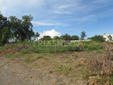 Piracicaba Jupia Terreno Venda R$3.000.000,00 3 Dormitorios  Area do terreno 9500.00m2