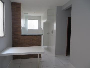 Apartamento novo, com 2 dormitórios, sala, cozinha planejada, banheiro com box e gabinete. 1 vaga de garagem descoberta.