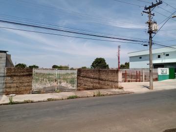 Piracicaba Santa Terezinha Terreno Locacao R$ 3.000,00  Area do terreno 1500.00m2