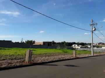 Lindo terreno plano dentro do Condomínio Reserva Jardins, situado no Bairro Alto da Boa Vista. Medindo 10 x 25 totalizando 250 m².  Estuda financiamento e aceita permuta com apartamento.